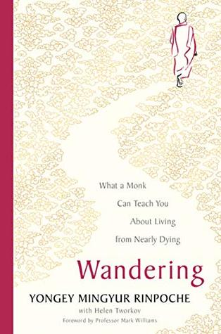 Wandering: What a Monk Can Teach You About Living from Nearly Dying