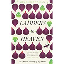 Ladders to Heaven