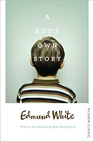 A Boy's Own Story (Picador Classic)