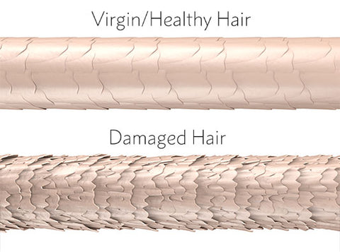 Healthy Vs Damaged Hair Cuticle
