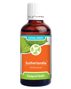 Sutherlandia Tincture - A Traditional Immune System Tonic