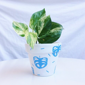 'Blue Monstera' Hand-Painted Planters