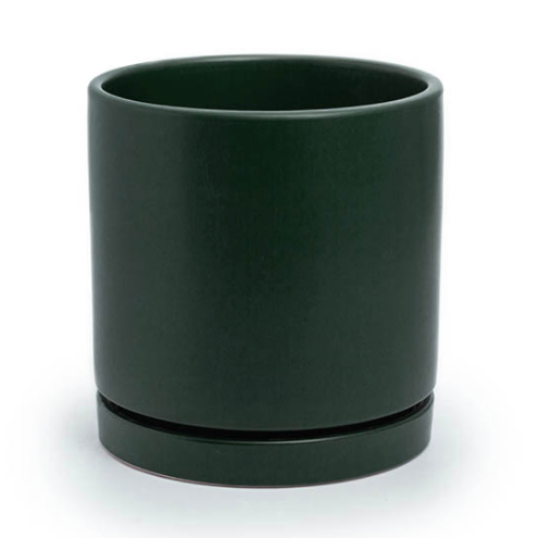 *NEW* Loreto Planter
