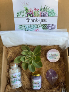 Thank you Succulent gift box, Thinking of You Gift Box,  Bridesmaids Gift