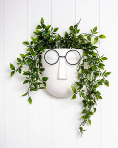 *NEW* Face Smarty Pants Wall Planter