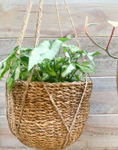 Load image into Gallery viewer, Seagrass Hanging Basket
