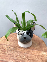 Load image into Gallery viewer, Smart Dog Planter