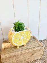 Load image into Gallery viewer, Citrus Planter