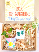 Load image into Gallery viewer, Box of Sunshine Gift Pack