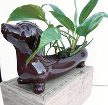 Load image into Gallery viewer, Dachshund Planter