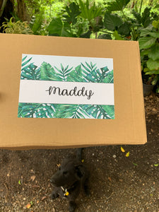 Plant Gift Box, Happy Birthday Gift box, Personalised Plant Gift