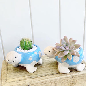 *NEW* Baby Turtle Planter
