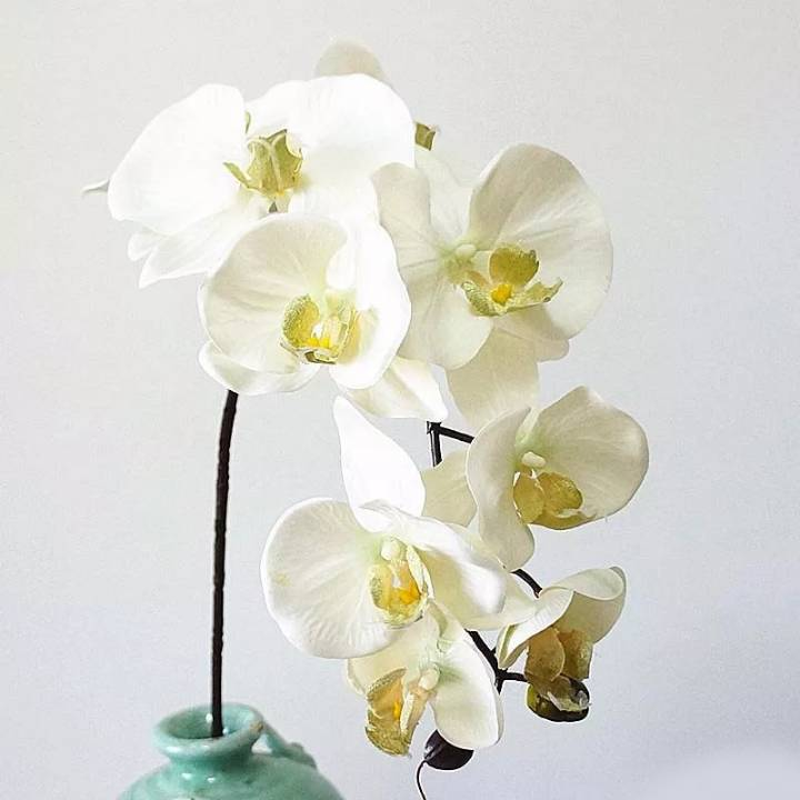 ARTIFICIAL ORCHID FLOWERS HEAD 10PCS SET