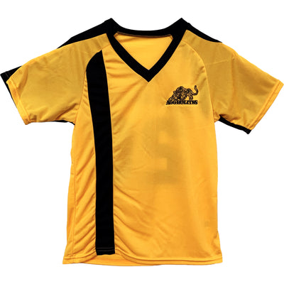 The Aggrolites - Aggropanther - Reggae Now! 20 - Black on Gold - Soccer Jersey
