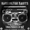 Harrington Saints - State Of Emergency Promo Flexi