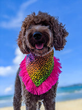 Load image into Gallery viewer, Pride Dog Bandana