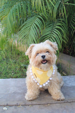 Load image into Gallery viewer, Sunshine Dog Bandana with Pom Poms