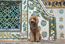 Load image into Gallery viewer, Phuket Frayed Dog Bandana