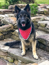 Load image into Gallery viewer, Red, White and Boom! Dog Bandana with Tassels