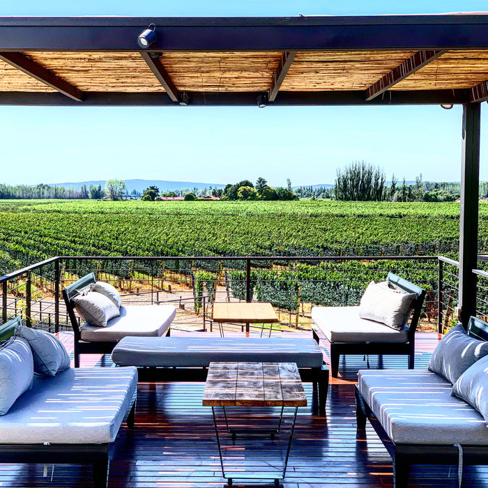 Finca Bandini House of Wines an Oasis in Mendoza's Wine Country