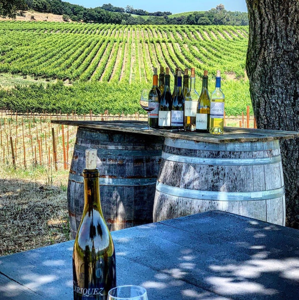 Cecilia Enriquez Walks the Walk and Makes Her Dream Come True With Enriquez Estate Wines