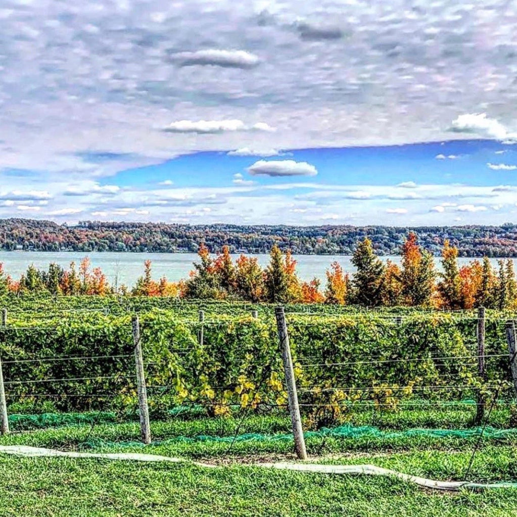 Tradition Lives On at Leelanau's Peninsula Bel Lago Winery