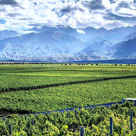 Mendoza, Argentina (All-Inclusive 6d/5n)