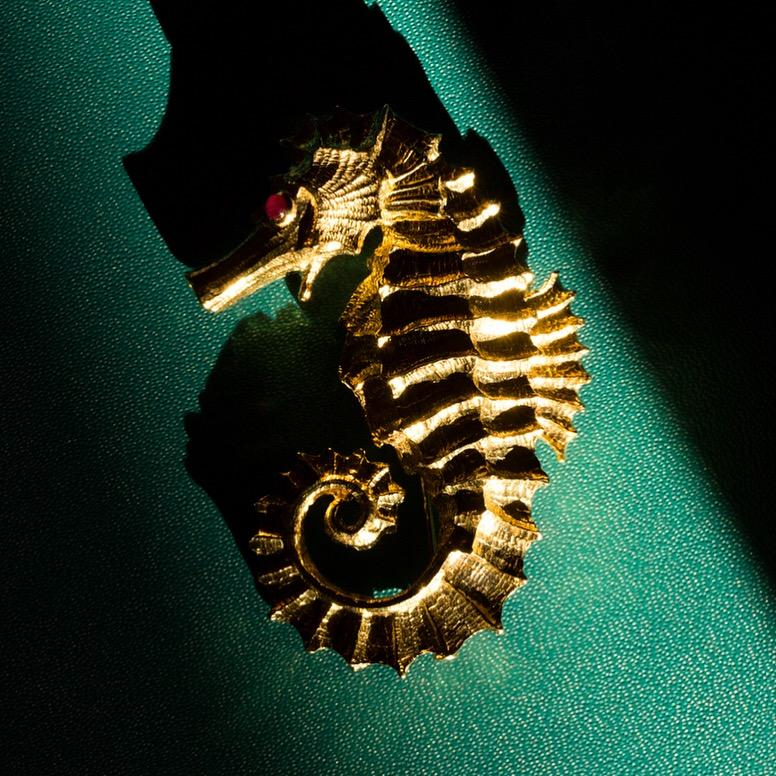 David Webb Ruby Gold Seahorse Pin / Brooch, 1970s