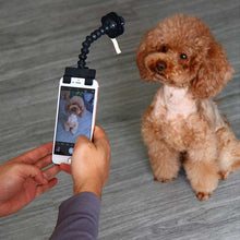 Load image into Gallery viewer, Dog Selfie Stick