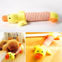 Load image into Gallery viewer, Cute Plush Squeak Toys