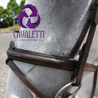 Cavaletti Collection Expression convertible bridle
