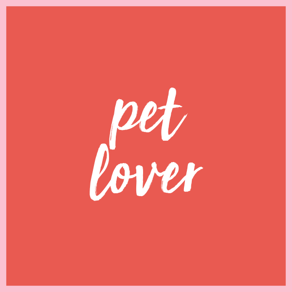 2017 Gift Guide - Pet Lover