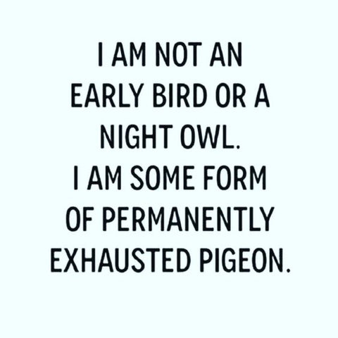 moon and lola pintrest exhausted pigeon quote