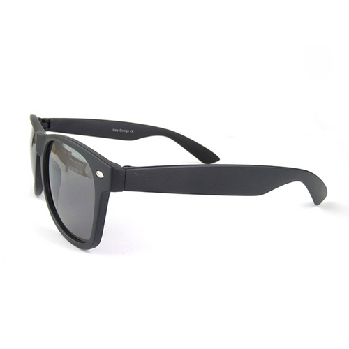 Moon and Lola - Wayfarer-styled matte finish ebony Sunglasses