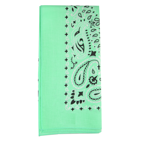 Moon and Lola - Traditional Bandana in Mint