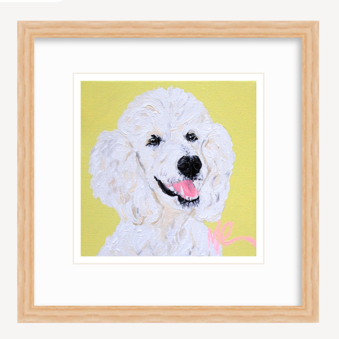 Moon and Lola - Lincoln the Standard Poodle print in frame