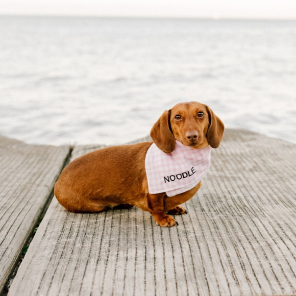 I found this at #moonandlola - Embroidered Gingham Bandana on dachshund named noodle
