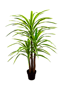 Planta yuca real touch 1.60mts