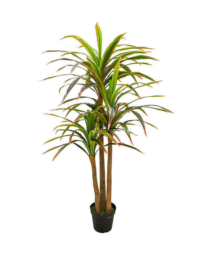 Planta yuca Real Touch 2mts