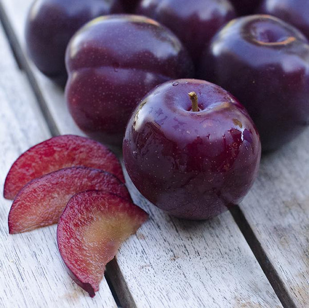 3 Qualities that Make Santa Rosa Plums Better than Others