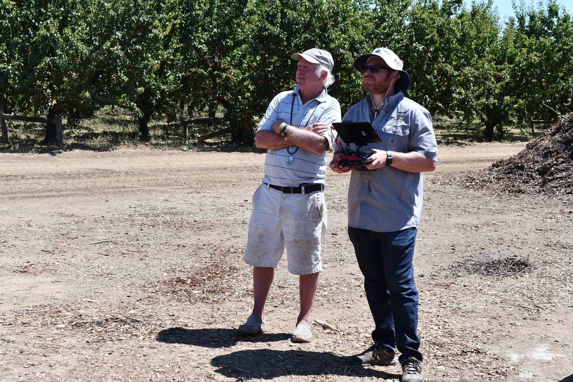 Gregg Young and Andreas from UAVIQ Precision Agriculture watching the UAV fly over the orchard