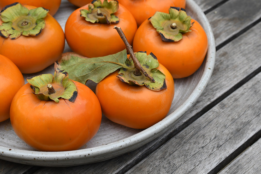 organic fuyu persimmons frog hollow