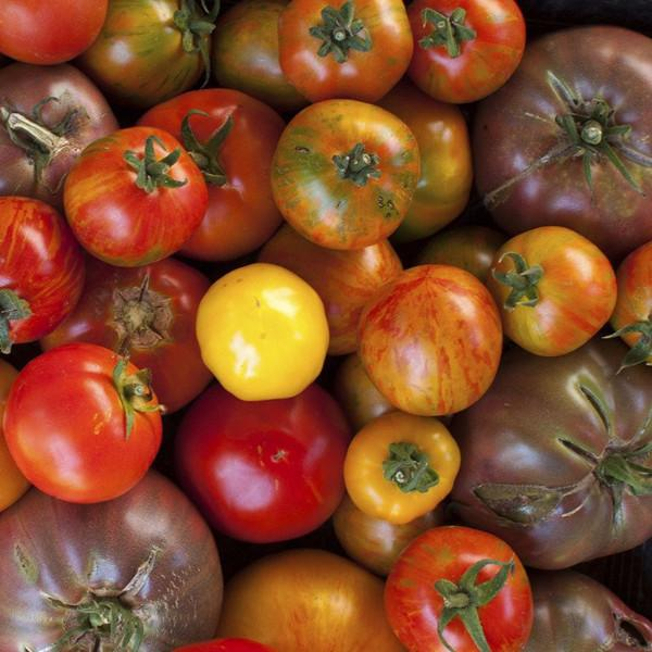 Organic Heirloom Tomatoes | Organic Fruit Delivery