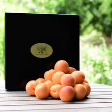 Load image into Gallery viewer, Organic Apricot Gift Box