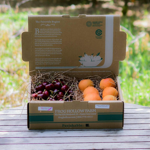 Organic Mixed Apricots & Cherries