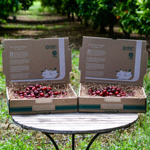 Load image into Gallery viewer, Organic Brooks Cherries
