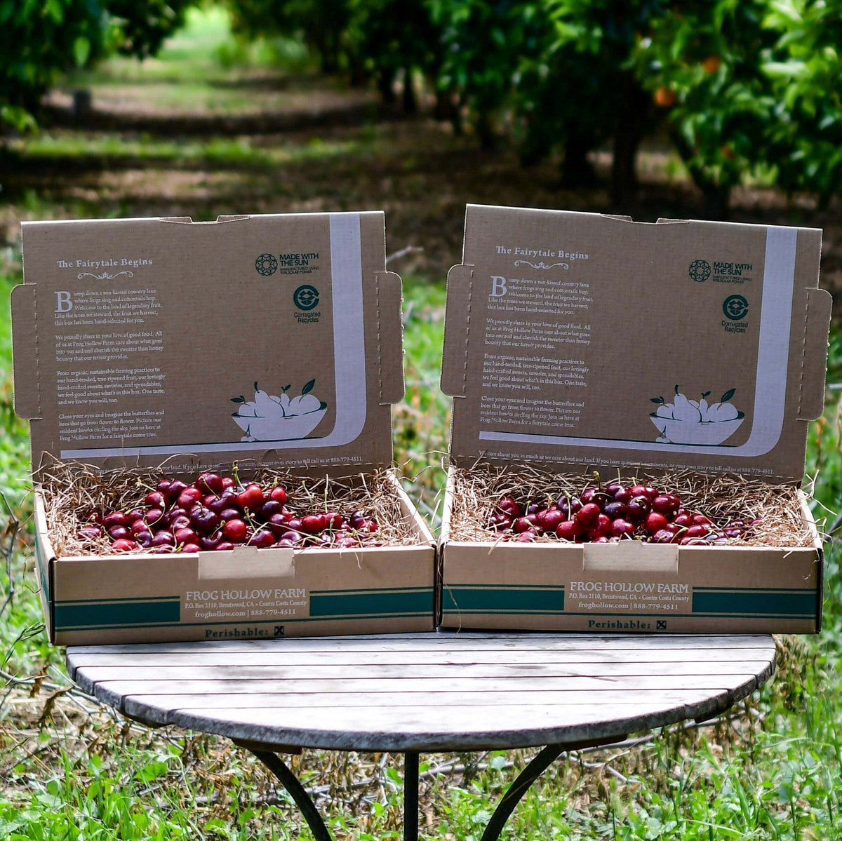 Organic Brooks Cherries