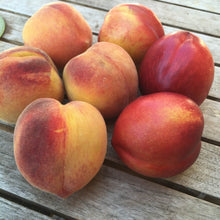 Organic Nectarine & Peach Box | Organic Peaches | Fruit Boxes