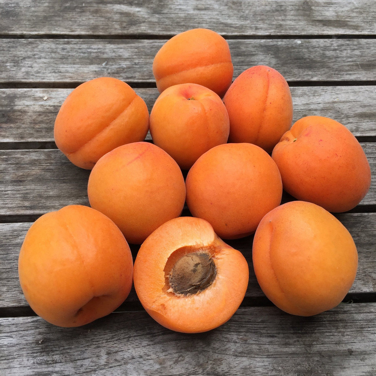 Organic Kettleman Apricots, Fruit Delivery
