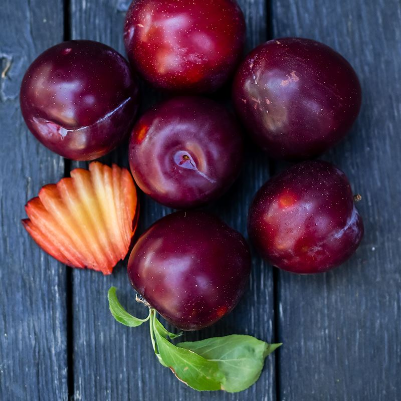Organic Santa Rosa Plums | Organic Fruit Delivery